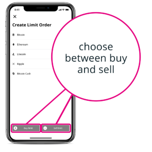 How to set a Limit Order in BISON App - third step.